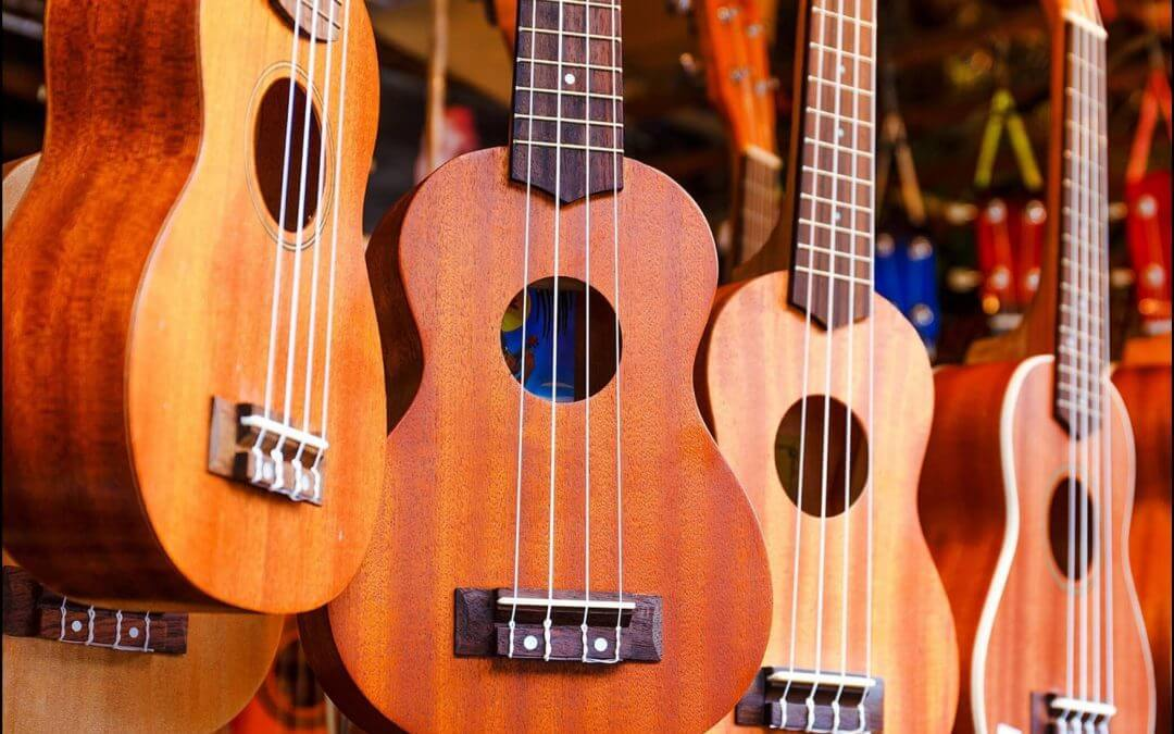 Ukulele Comparison for Music Class